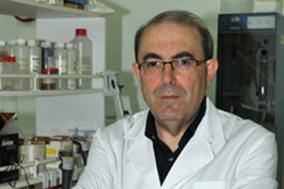 José Pascual Gracias - Laboratorio